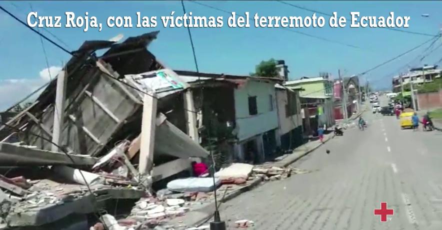 Cruz Roja, con las víctimas del terremoto de Ecuador